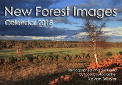 New Forest Images Calendar 2018
